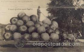 exa001026 - Exaggeration postcard Post Card
