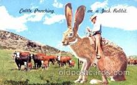 exa001097 - Exaggeration Postcard Post Card