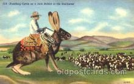 exa001098 - Exaggeration Postcard Post Card