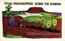 exa002121 - Texas Grasshoppers Exaggeration Old Vintage Antique Postcard Post Card
