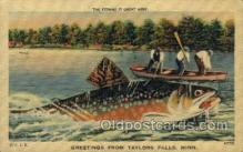 exa002131 - Taylors Falls, Minn, USA Exaggeration Old Vintage Antique Postcard Post Card
