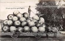exa002222 - Good Apples  Postcards Post Cards Old Vintage Antique