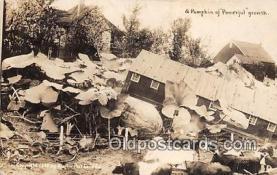 exa002239 - Pumpkin  Postcards Post Cards Old Vintage Antique