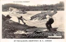 exa002240 - Glacier Courtenay, BC, Canada Postcards Post Cards Old Vintage Antique