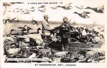 exa002248 - Ducks Gooderham, Ont, Canada Postcards Post Cards Old Vintage Antique