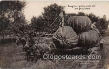 exa002276 - Pumpkin 1908 WH Martin Postcards Post Cards Old Vintage Antique