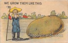 exa002289 - Potato  Postcards Post Cards Old Vintage Antique
