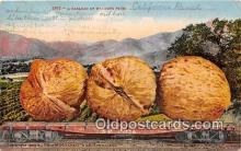 exa002300 - Carload of Walnuts California Ranch, USA Postcards Post Cards Old Vintage Antique