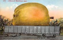 exa002310 - Mammoth Belleflower Apple  Postcards Post Cards Old Vintage Antique