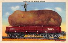 exa002320 - Potato Maine, USA Postcards Post Cards Old Vintage Antique