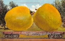 exa002323 - Carload Bellflower Apples  Postcards Post Cards Old Vintage Antique