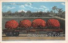 exa002327 - Carload of Strawberries Florida, USA Postcards Post Cards Old Vintage Antique