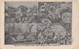 exa002329 - Section N Crops Unique Bungalow Postcards Post Cards Old Vintage Antique