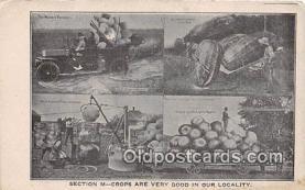 exa002330 - Section N Crops Modern Farmer Postcards Post Cards Old Vintage Antique