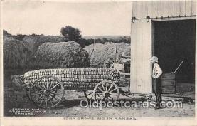 exa002331 - Corn Kansas, USA Postcards Post Cards Old Vintage Antique