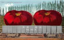 exa002336 - Carload of Tomatoes  Postcards Post Cards Old Vintage Antique