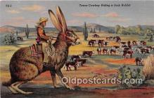 Texas Cowboy Riding a Jack Rabbit