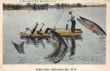 exa002357 - Indian Lake Adirondack Mountains, NY, USA Postcards Post Cards Old Vintage Antique