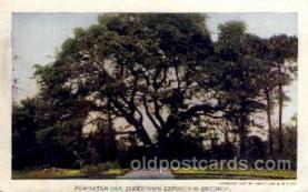 exp040012 - Jamestown Exposition 1907, Near Norfolk, Virginia, USA Postcard Post Card