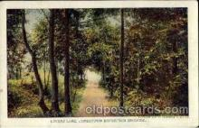 exp040084 - Lovers lane Jamestown Exposition 1907, Postcard Post Card