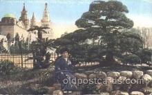 exp080221 - Japanese Tea Garden 1915 Panama International Exposition, San Francisco, California USA Postcard Post Card