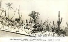 exp200028 - Garden on Parade Cacti & Succulent, Garden Worlds Fair 1940