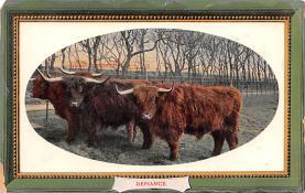 eyy000015 - Post Card Old Vintage Antique