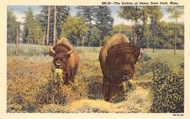 eyy000209 - Post Card Old Vintage Antique