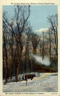 fac001070 - Boiling Maple Sap Vermont, USA Postcard Post Cards Old Vintage Antique