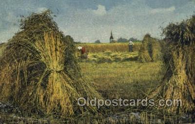 far001350 - Farming Old Vintage Antique Postcard Post Card
