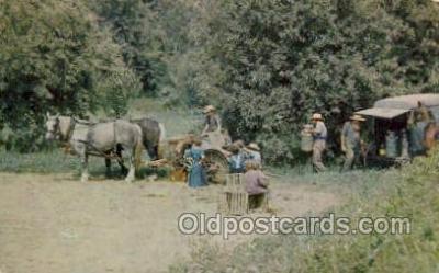 far001363 - Family Farming Farming Old Vintage Antique Postcard Post Card