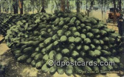 far001414 - Five Tons of Watermelons Farming Postcard Post Card