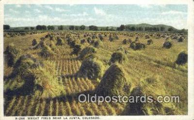 far001416 - Wheat Field Farming Postcard Post Card