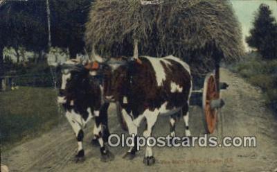 far001422 - The Right of Way Farming Postcard Post Card