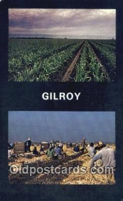 far001557 - Garlic Festival Farming Postcard Post Card