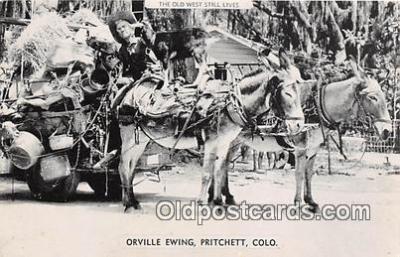 Orville Ewing