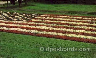 fgs001066 - Flag, Flags Postcard Post Card