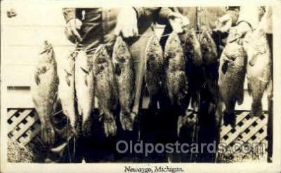 fis001007 - Fishing Postcard Post Card