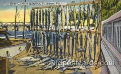 fis001040 - Fishing Postcard Post Card