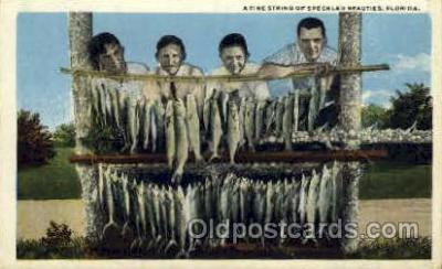 fis001041 - Fishing Postcard Post Card