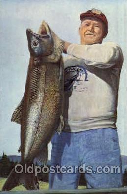 fis001070 - Fishing Postcard Post Card