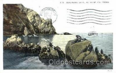 fis001084 - Seal Rocks, Catalina Island, California, USA, Fishing Postcard Post Card
