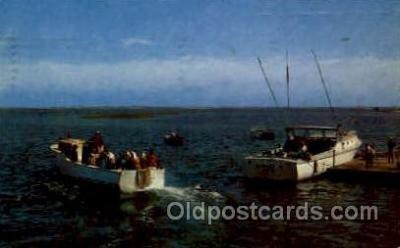 fis001243 - Chathan, Cape Cod, Mass., Massachusetts, USA Fishing Postcard Post Card