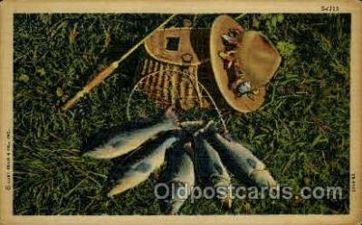 fis001250 - Fishing Postcard Post Card