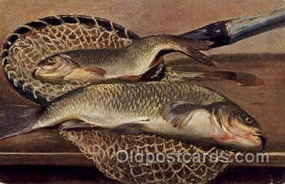 fis001251 - Fishing Postcard Post Card