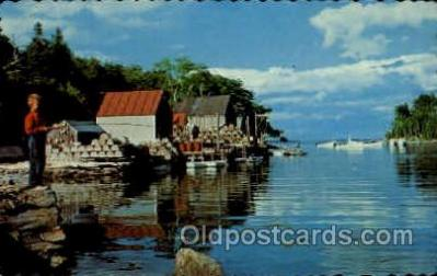 fis001259 - High Tide Fishing Postcard Post Card