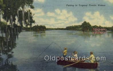fis001278 - Florida USA Fishing Old Vintage Antique Postcard Post Card