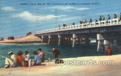 fis001286 - Florida USA Fishing Old Vintage Antique Postcard Post Card