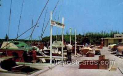 fis001298 - Boynton Beach, Florida USA Fishing Old Vintage Antique Postcard Post Card