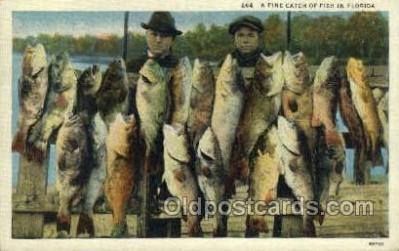 fis001317 - Fine Catch in Florida, USA Fishing Old Vintage Antique Postcard Post Card